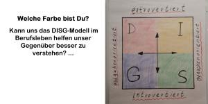 DISG-Modell - Redeclub-München